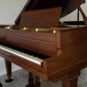 Grand Piano_Avadian